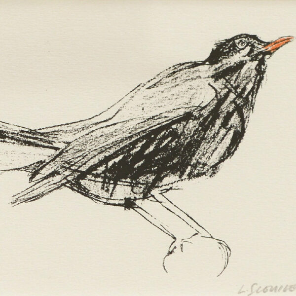 Blackbird, lara scouller, greengallery