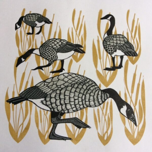 Geese, Babs Pease, Greengallery