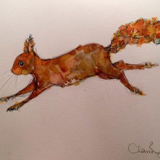 Work by Charlotte Brayley