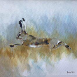 Freedom to Roam by Heloise Maylin