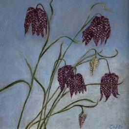 Fritillaria by Gill Wilson