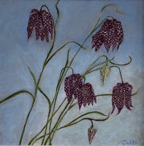 Fritillaria, Gill Wilson, Greengallery