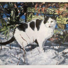 Snow Cat by Georgia Boyd