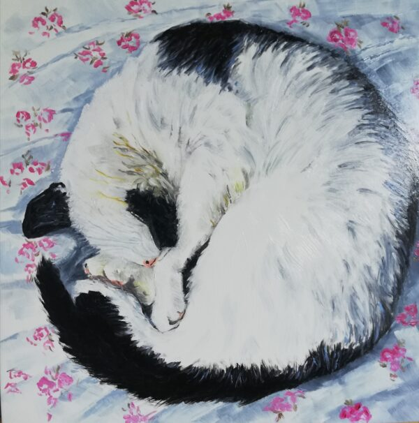 Do Cats Dream? Georgia Boyd, Greengallery