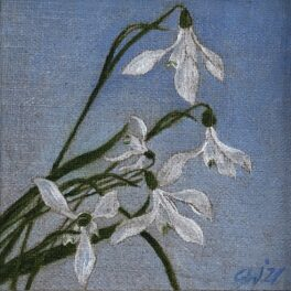 Snowdrops II by Gill Wilson