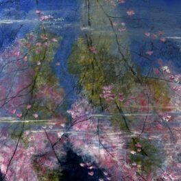 Blossom Reflections by Sandra Moffat