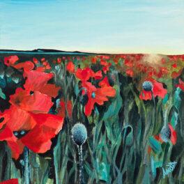 Poppy Sunrise by Amanda Buchanan Hutchison